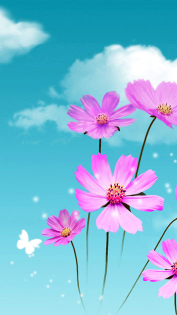 Pure Dreamy Beautiful Galsang Flower Cloudy Sky iPhone images.